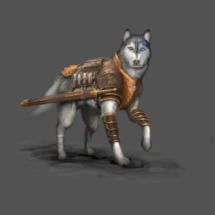 Adventurer Dog
